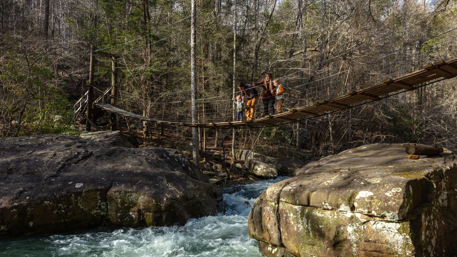 Our Impact - The Land Trust For Tennessee