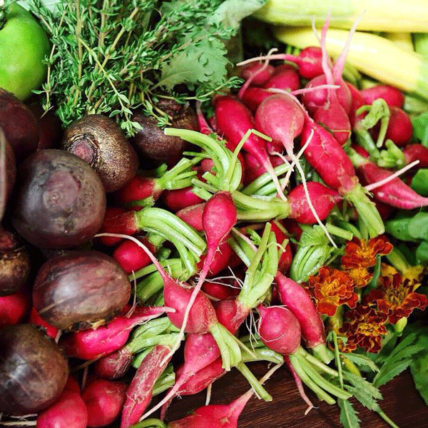 Hermitage Hotel vegetables_photo credit Hermitage Hotel